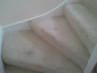 slide-carpet4